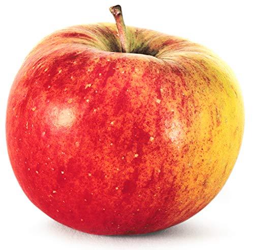Obst & Gemüse Bio Apfel Topaz (1 x 1000 gr)