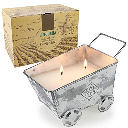 Large Citronella Candles Outdoor 2-Wick Burning, 100+ Hour Burn 18.3 Oz Natural Pure Soy Wax with Citronella Oil for Garden Patio Yard, Outdoor and Indoor