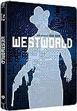 51KZlntuD+L. SL160  - Westworld : Une franchise entre passé et futur