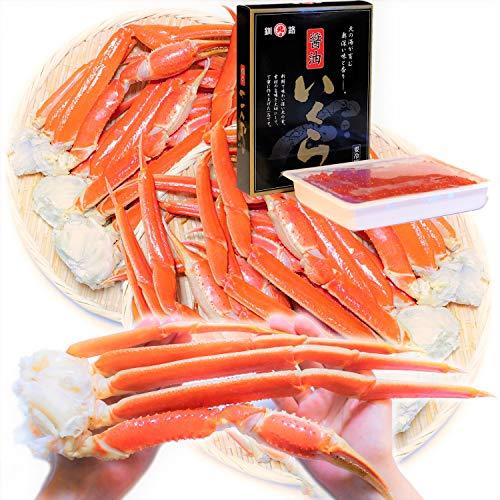 【Amazon.co.jp限定】 黒帯 海鮮セット ズワイガニ 足 特大 1.5kg (4-6肩) / いくら醤油漬け 500gx1 北海道 ギフトセット