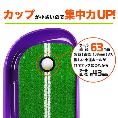 Tabata(タバタ)パターマットゴルフパター練習藤田プロ共同開発芝長1.7mFUJITAマット1.5GV0141