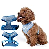 <span class='highlight'><span class='highlight'>DLFALG</span></span> Pet Supplies_Dogs Cats Outfits Harness Leash Portable Mini Trainer Solid Colored Fabric Net Front Clip Vest Harness Breathable Puppy Chest Padded Adjustable/Blue/Xs