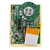 NITRIP 27s Música grabable Sonido Módulo de Voz Control de Chip de Chip, Control fotosensible, Control de Doble botón con Cable 0.5W con batería de botón(Control de Doble botón con Cable)