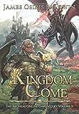 Kingdom Come: A LitRPG Dragonrider Adventure