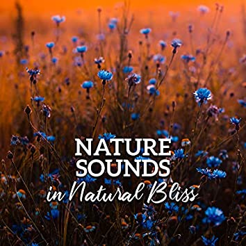 Nature Sounds in Natural Bliss – Pure Relaxation, Reduce Stress, 15 Sounds of Nature, Healing Therapy, Zen Serenity, Lounge Music