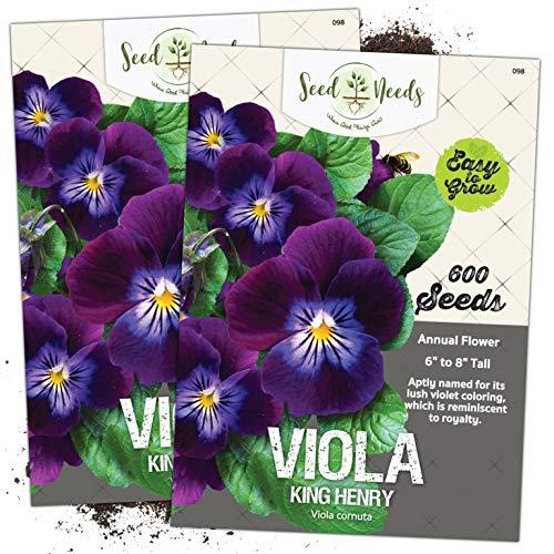 Seed Needs, King Henry Viola (Viola...