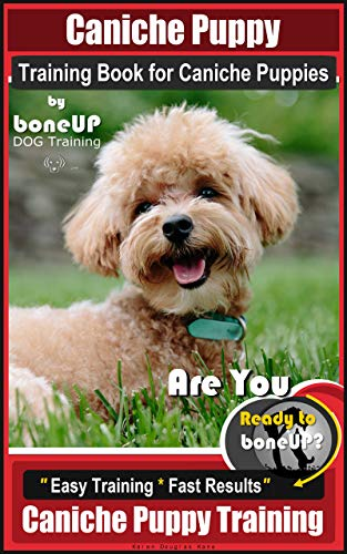 Caniche Puppy Training Book for Caniche Puppies By BoneUP DOG Training. Are You Ready to Bone Up?  Easy Training * Fast Results, Caniche Puppy Training (English Edition)