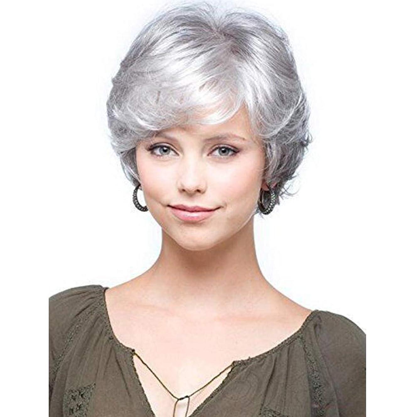 いつ原油のれんYrattary 中年の女性のシルバーグレーのショートヘアふわふわヘアウィッグコスプレウィッグ (色 : グレー)