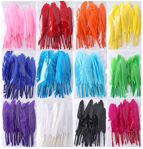 Coceca 240pcs Colorful Goose Natural Feathers 4-6 inches Feathers for DIY Crafts