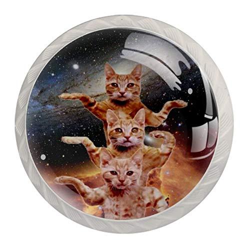 Juego de 4 pomos para puerta de armario, estilo vintage y chic, diseño de gato