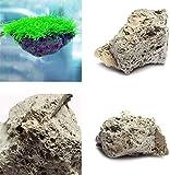 2pcs Aquarium Bimsstein Steine, Aquarium Schwimmend Rock Moos Stein, Natürlich Blick Deko Verzierung - Wie Bild Show, m