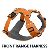 Ruffwear All-Day Dog Front Range Harness, Orange (Poppy), S