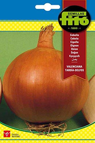 Semillas Fitó 1234 - Semillas de Cebolla Valenciana Tardía Delfos