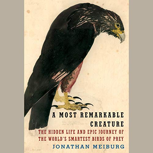 A Most Remarkable Creature cover art