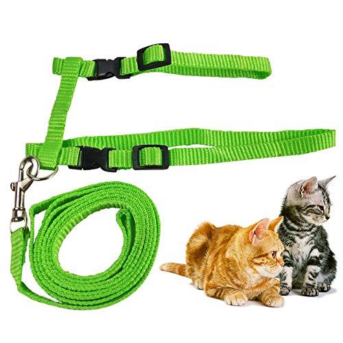Katzengeschirr mit Leine Verstellbare Geschirre Katzenleine Kätzchenhalsband Ausbruchsichere Katzenweste für Kleine Katzen (Grün)