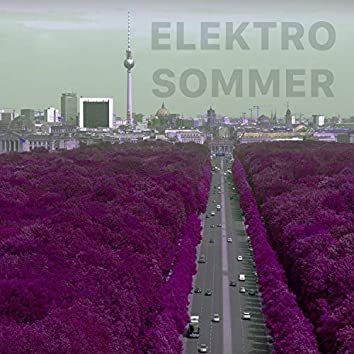 Elektro Sommer