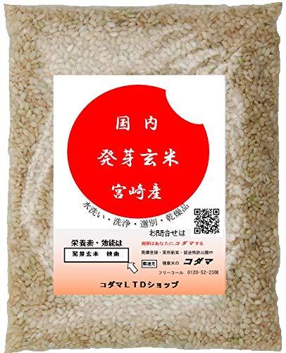 発芽玄米 300g ドライタイプ 無洗玄米