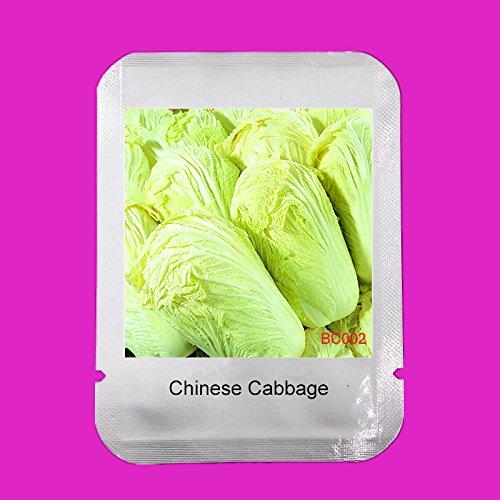Chou chinois Graines New Hot vente Délicieux Organic Nouveau Jardin Paquet Fournitures de fruits Graines de bricolage Légumes, # BC002