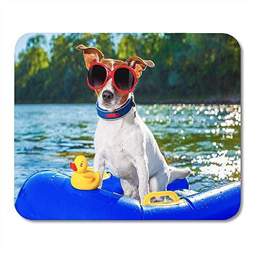 Jack Russell Dog, der auf aufblasbarer Matratze in der Wasserdichten bequemen Computerauflage-Matte 18x22CM sitzt