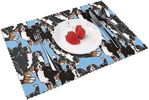 Juego de 4 manteles Individuales Bernese Mountain Dog para Mesa de Cocina Manteles Individuales Tejidos para Mesa de Comedor