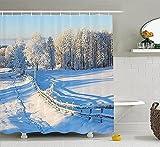 legante Cortina Cortina de Ducha para baño Costa de Palmira 180*180cm decoración de baño Cortinas de Ducha Baño,Cortina de Ducha Color Blanco Transparente,Cortina de Ducha antimoho Impermeable