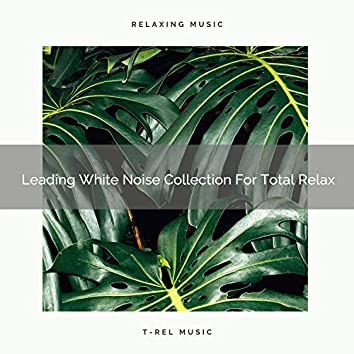 Leading White Noise Collection For Total Relax