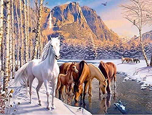 5D DIY diamond painting caballo blanco Diamante pintura Kit lienzo artesanal bordado de punto de cruz para decoración de pared 40 x 50 cm