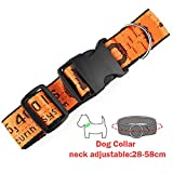 liming Luxury Letter Print Dog Collar Leash Set for Small Dogs Nylon Dog Leashes Collars Set for Dogs, Collar Orange