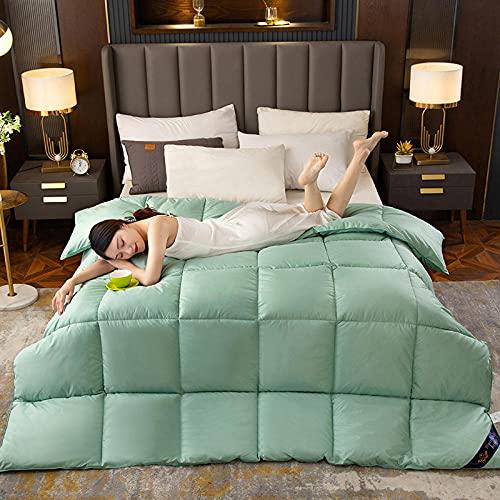 XINDUO Relleno/edredón nórdico,Edredón Suave y cómodo de algodón Verde_200 * 230 (4 kg),Todas Las Estaciones Edredón de