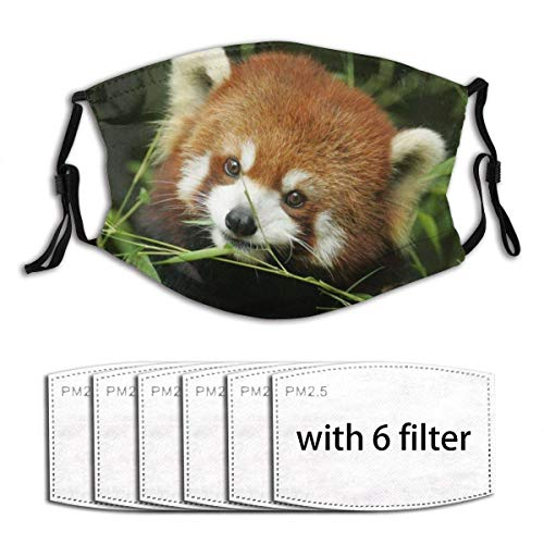 Face Cover Animal Cute Red Panda Mask Print Design Balaclava Bandanas Reusable Windproof Anti-Dust Adjustable Earloops Headwear Outdoor Motorcycle Running Dust Cover with 6 Filters for Teen Men Women