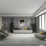 Home Alfombra Acogedor Gris Moderno Simple Home Salon Dormitorio...