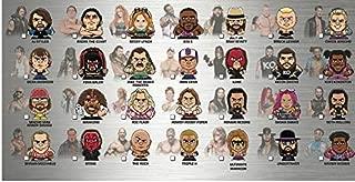 Party Animal Teenymates WWE Wrestling Series 2 Complete Base Set of 28 Mini Figures Minifigure Set