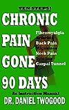 Chronic Pain Gone 90 Days (English Edition)