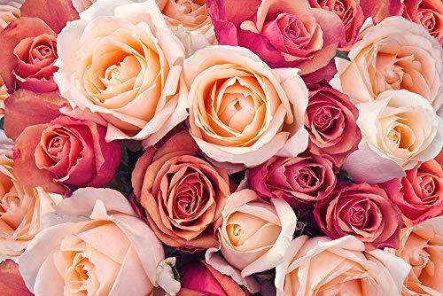 DesFoli Rosen Blumenstrauß Rot Poster Kunstdruck Fotoposter P2248 Größe 50 cm x 70 cm