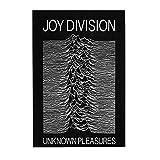 ジョイ・ディヴィジョン JOY DIVISION Unknown Pleasures 木製パズル300ピース楽しいパズル減圧パズル300ピースバースデーギフトホリデーギフト