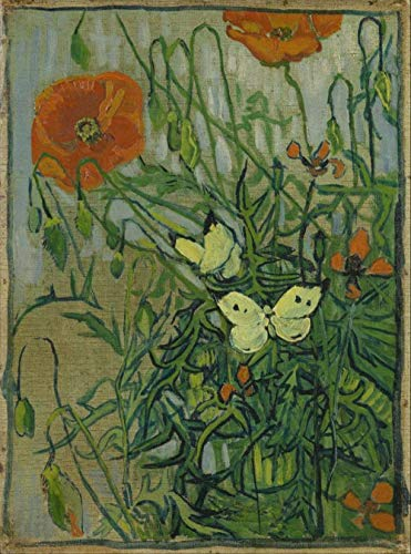 Still Life Van Gogh Butterflies and Poppies DIY Paint by Numbers Famous Artwork Abstract Canvas Paint by Kits Adults Beginner 15.75 x 19.69 inches