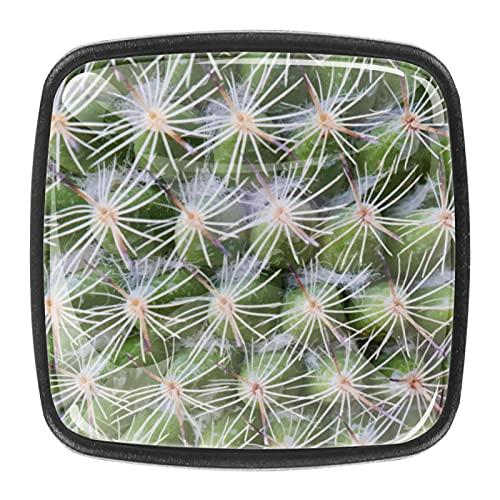 Closeup of Cactus Plant Wallpaper Drawer Knob Pull Handle Crystal Glass Cabinet Drawer Pulls Knäufe with Screws Crystal Glass Drawer Cabinet Pull Knob Handle Kitchen Door Wardrobe Hardware 4 Pack