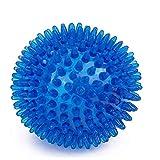 BDUK Bolas de perro para masticar con bola de masaje con pinchos para mascotas juguetes para dentición de cachorros de goma TPR natural no tóxica suave anillo limpieza de dientes de perro 9 cm (azul)