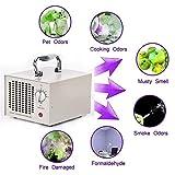 Sawera Ozone Generator 220v Generador de Ozono purificador de Aire ozono Dispositivo Ozono isator Máquina de Ozono + Acero Inoxidable de Caja, Negro/Blanco