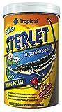 Tropical Sterlet (Cancelación del Forro), 1er Pack (1x 1l)