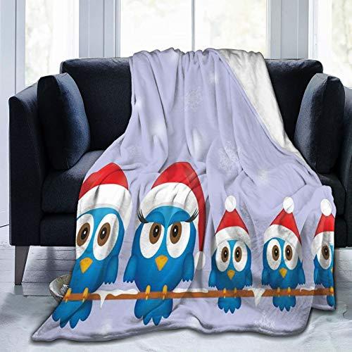 Manta mullida para pájaros con sombreros de Papá Noel en alambre de...