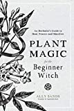 Plant Magic for the Beginner Witch: An Herbalist's Guide to Heal, Protect and Manifest