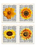 Sunflowers 8x10' Set of 4 Un Framed Prints. On Upcycled Vintage Style Dictionary Page. Ideal for sunflower lovers, and anyone who want to brighten up their kitchen, office or other home room