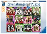 Ravensburger-Puppy Pals 500 Piece Jigsaw Puzzle Rompecabezas, (14659)