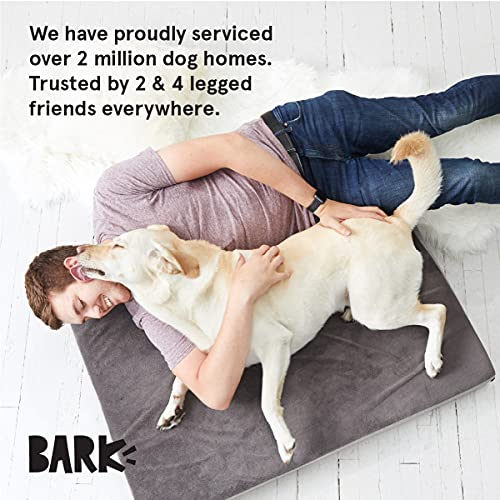 Product Image 6: Barkbox Memory Foam Platform Dog Bed