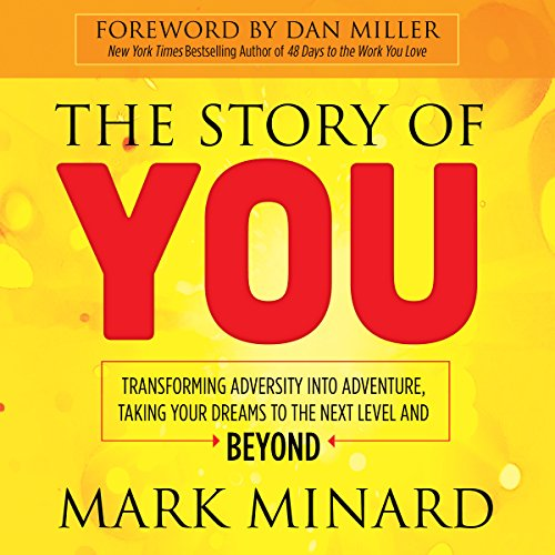 The Story of You audiobook cover art