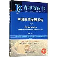 青年蓝皮书:中国青年发展报告No.4