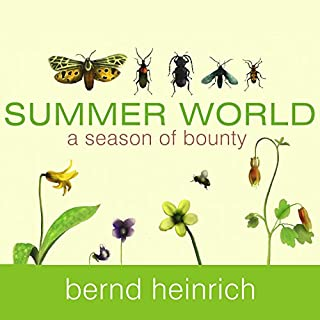 Summer World cover art