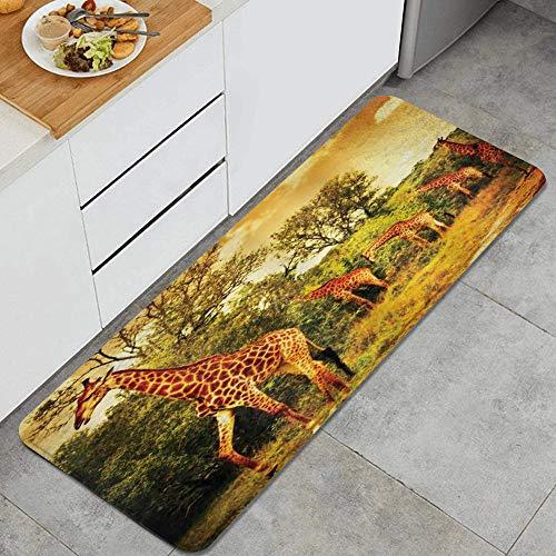 LISNIANY Tappeto antiscivol,Animali della Giraffa Che camminano nella Fauna Selvatica della Savana della Foresta Verde,da Usare Come zerbino o per Soggiorno,Camera da Letto,corridoio,Cucina