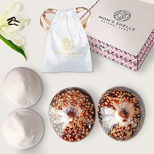 MOM'S SHELLS (T.Medium) - Coquillages d'allaitement Nacre + Coussinets + Lingette OFFERTS -...